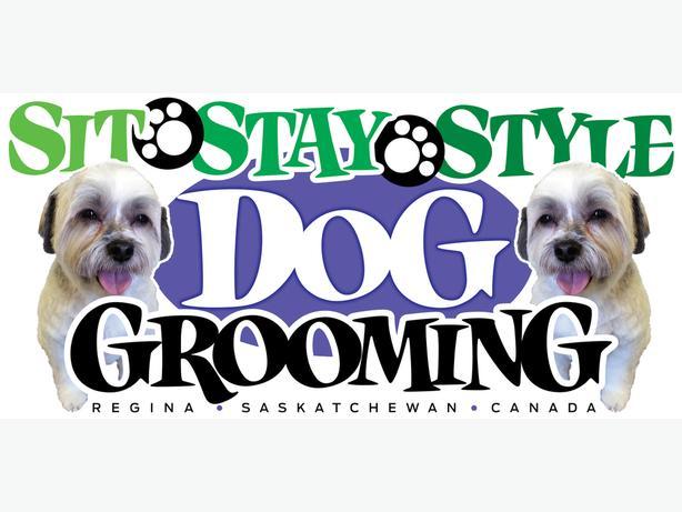 In Home Dog Grooming Oshawa