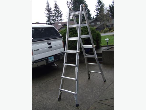 Extension and step ladder all in one