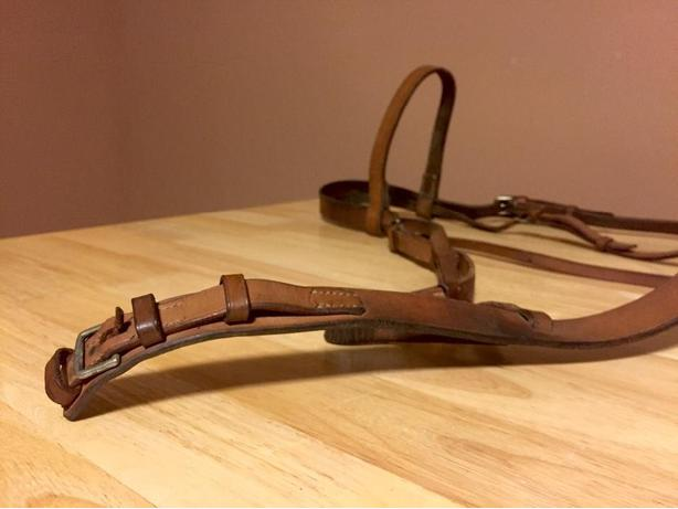 Decorative flat leather bridle