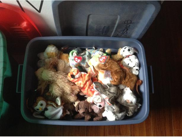 Beanie babies and beanie buddies for sale