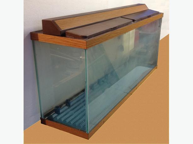 55-Gallon Aquarium in Glass