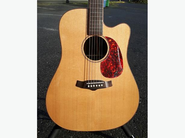 Tanglewood Acoustic Electric Guitar Solid Top w/ Mango Back MINT