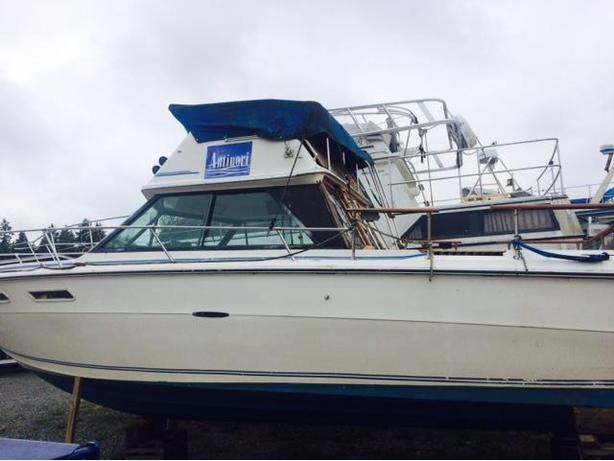 1977 24' Searay with command bridge dual station