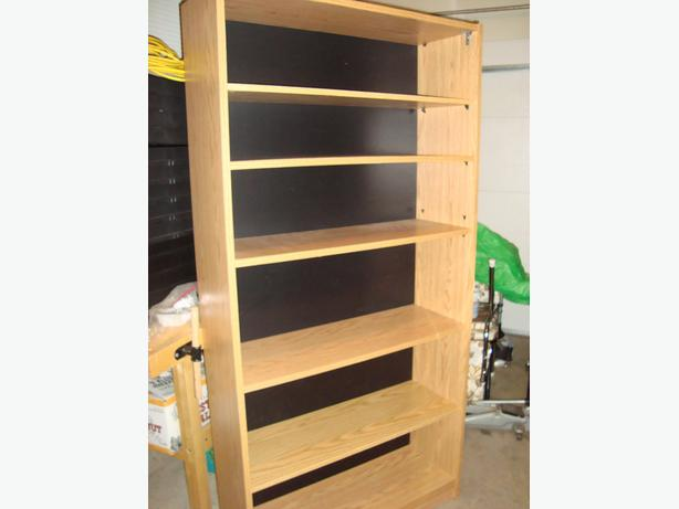 Bookcase, shelving unit.