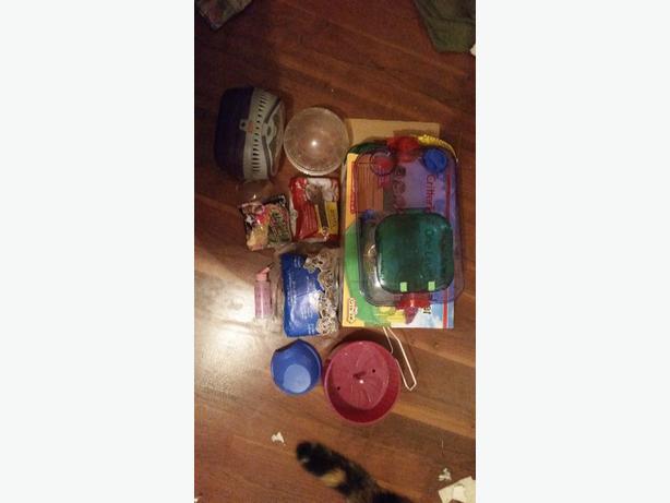Hamster/ Gerbil stuff!