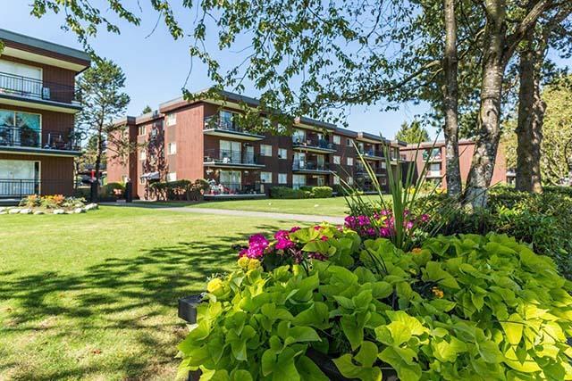 Surrey Square Apartments