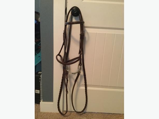 cob sized horse bridle