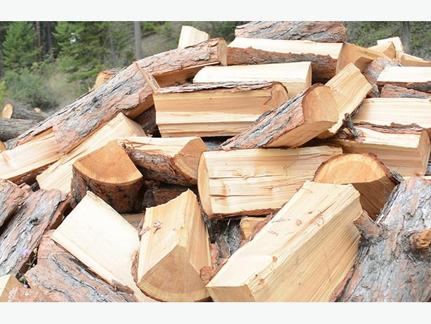 WANTED: FIREWOOD LOGS ROUNDS FREE...
