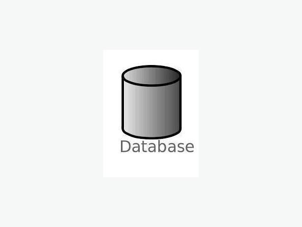 Programming Course:  Databases