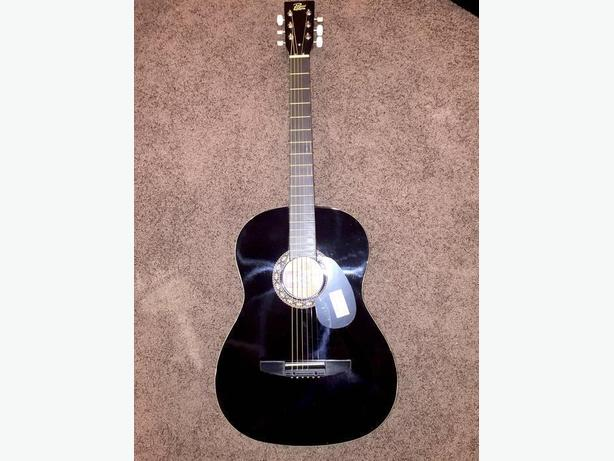 Free $200.00 new Rogue acoustic guitar