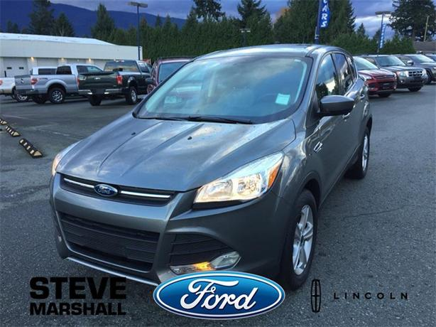 2014 Ford Escape SE - Low Kms!