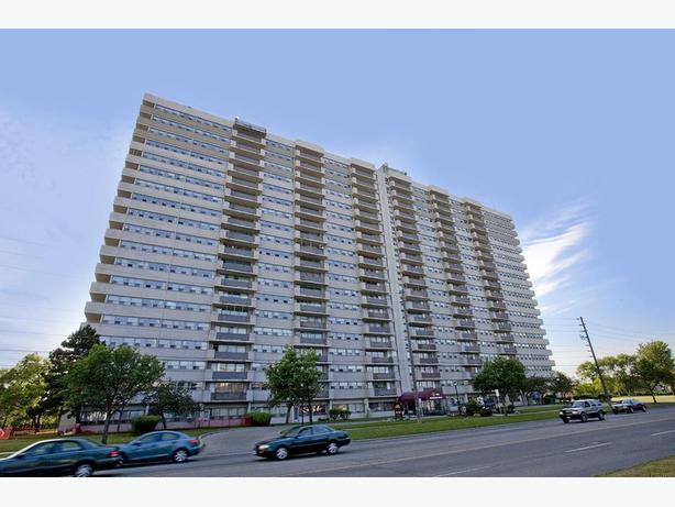 Avail. Jan  Cute  1 bedroom Scarborough Markham Road Apartments - 1050