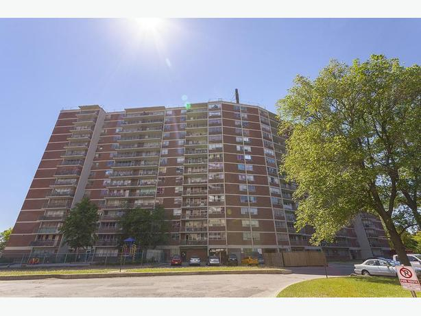 Avail. Dec  Nice  1 bedroom Scarborough Markham Road Apartments - 225