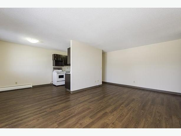 Avail. now WoW  2 bedrooms Regina Lewvan Village Apartments