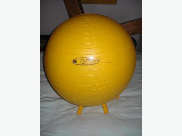 """18"""" Ball by Fit Ball co.  is  the Best Ball.    Euro Sport"""