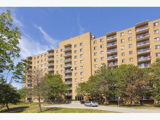 Avail. now Gorgeous  1 bedroom Brampton Brampton Village Apartments