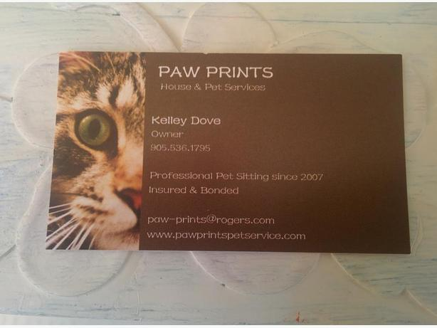 Looking for a Professional Cat Sitter?Pet Sitting Company?