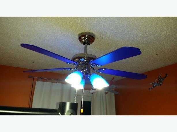 Indigo Blue Ceiling Fan East Regina Regina