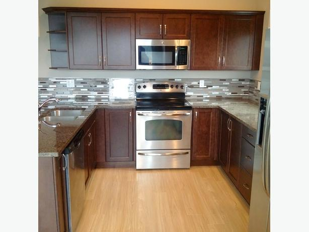 ... In needed $4,000 ? Custom Kitchen,appliances and Granite countertop