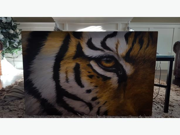 Eye of the tiger canvas