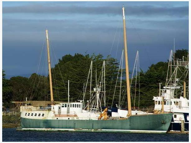 Research Vessel Sailboat For Sale - Philip Bolger 410 Design - Phuma