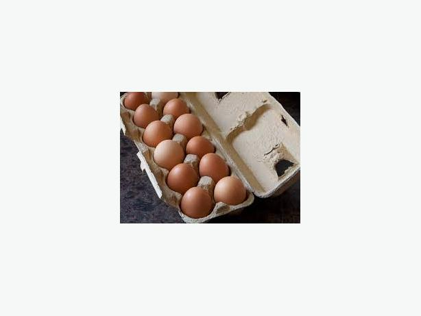 EGGS  ~   FREE RANGE BROWN EGGS !!