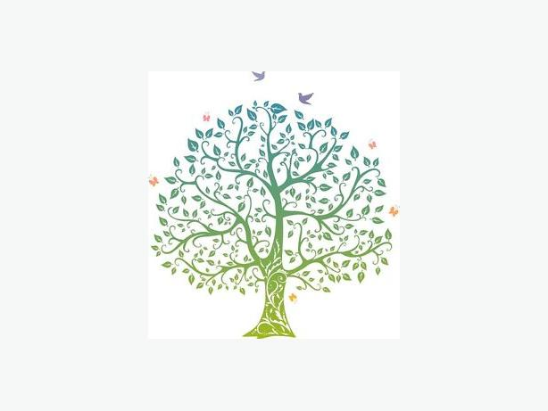 Tree Of Life Home Care 2 Openings for February!!