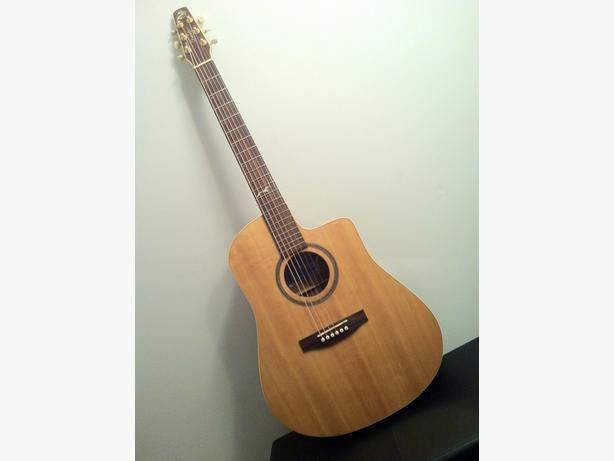 The Artist Series 'Portrait' Cutaway Acoustic Guitar from Seagull