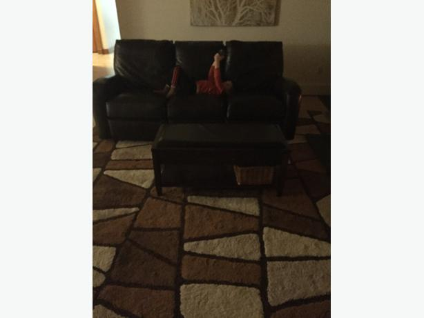 100% wool rug 10x13' high quality