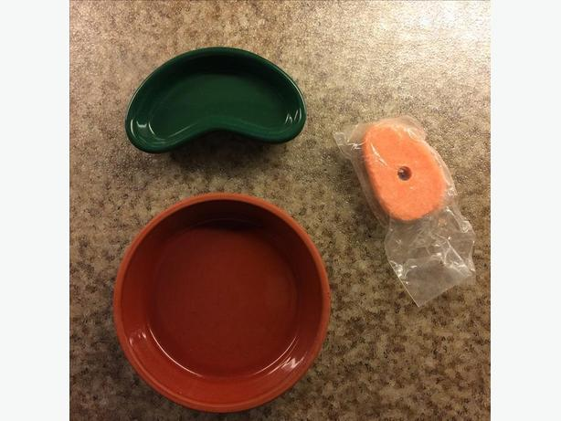 Two small pet dishes / saucers with free bonus salt treat !