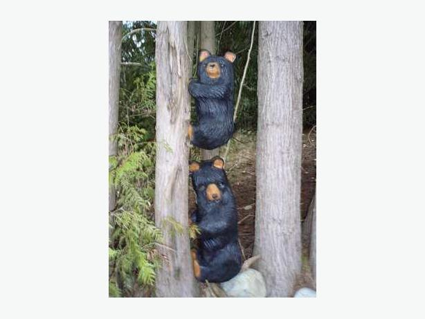 Chainsaw bears outside victoria