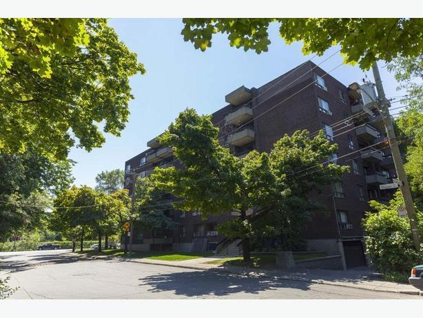 Disp. maint. WOW  4 1/2 Ville de Mont-Royal Appartements Parc Royal, Avail. now