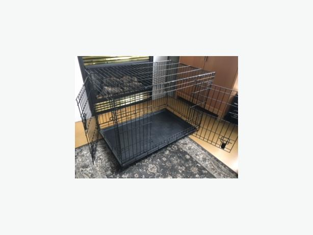 dog crate wire kennel for medium large dogs victoria city victoria. Black Bedroom Furniture Sets. Home Design Ideas