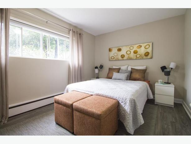 Updated Apt in Excellent Location- Mins to Algonquin!