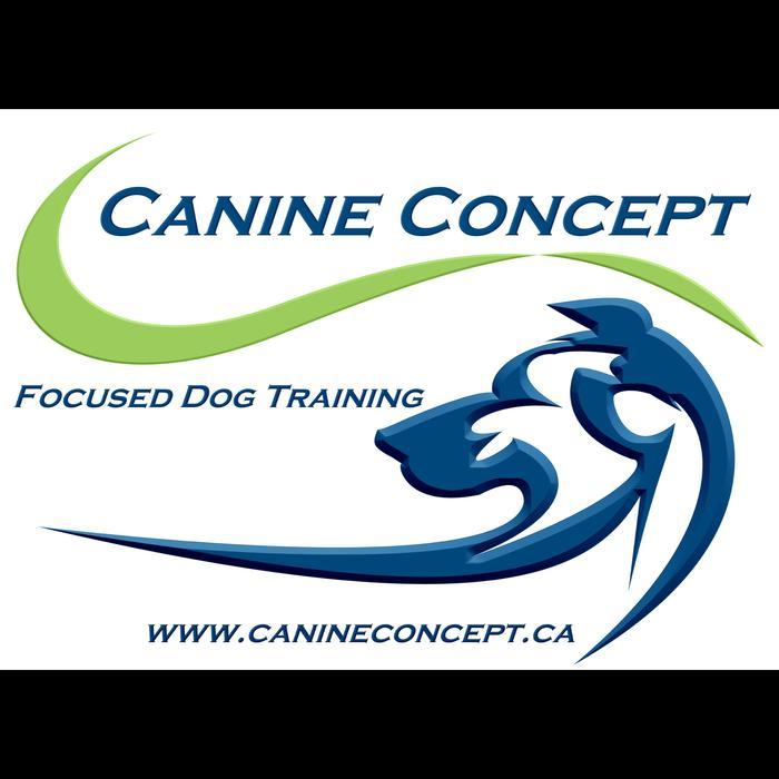 Dog Training Classes Durham