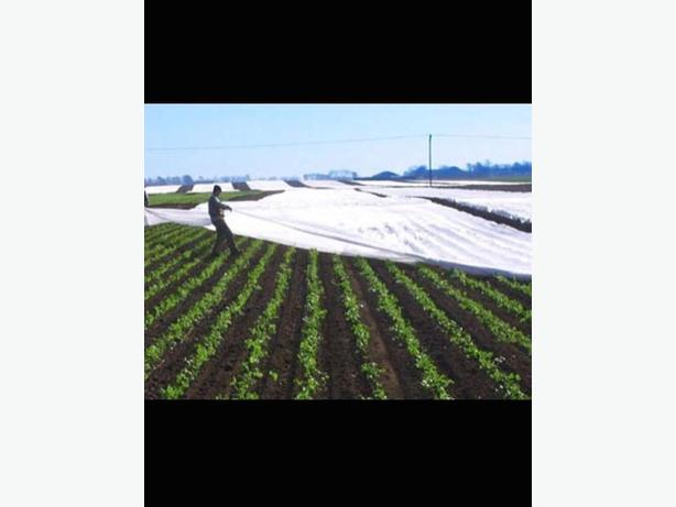 Used Row Cover / Novagryl Crop Cover - Greenhouse Effect