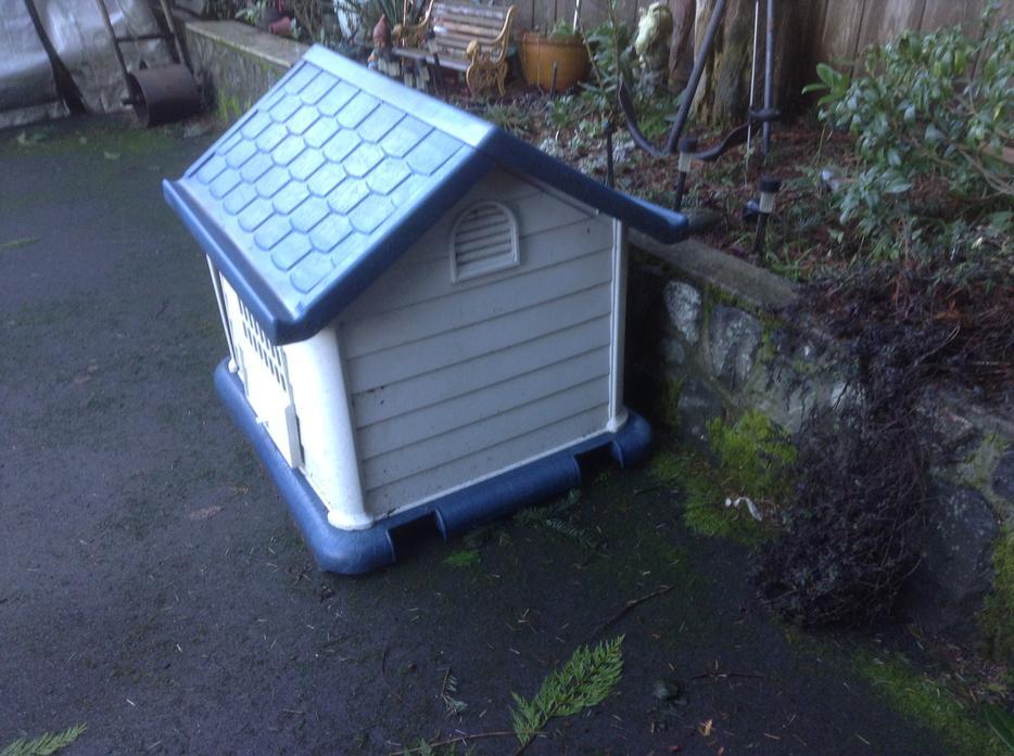 Dog House Thunder Bay