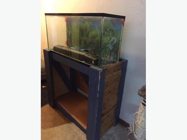 40 gallon aquarium and stand east regina regina mobile for 40 gallon fish tank stand