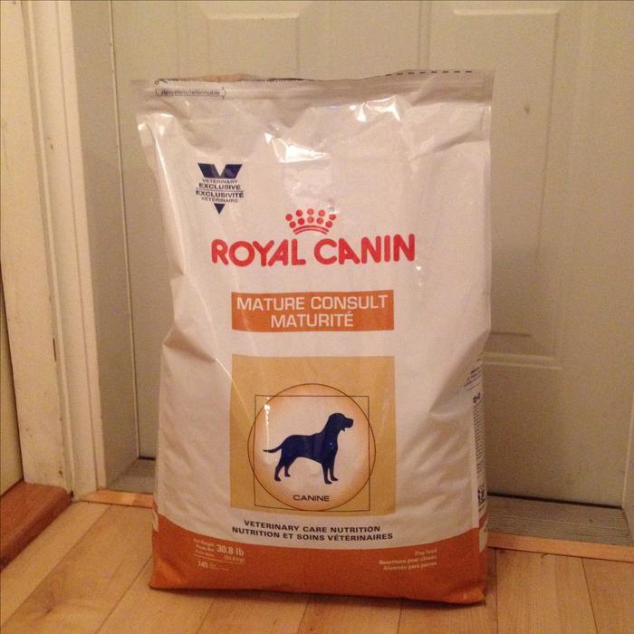 dog food royal canin senior saanich victoria. Black Bedroom Furniture Sets. Home Design Ideas