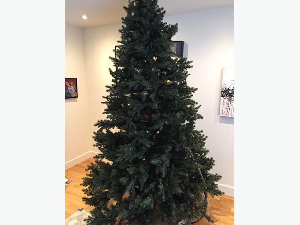 Free 8 39 Tall Christmas Tree South Regina Regina