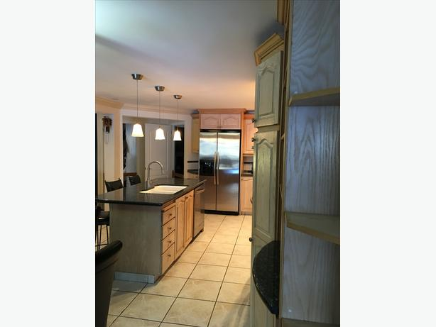 Used Kitchen Cupboards Blue Pearl Granite Top Island And