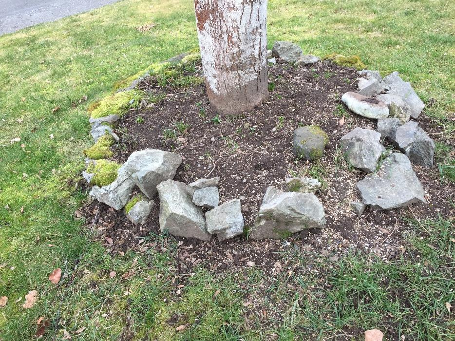 free landscaping rocks saanich victoria