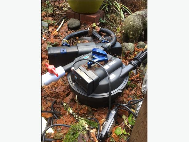 Coy gold fish and pump and aerator for sale sooke victoria for Koi pond pumps for sale