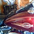 2008 Harley D Heritage