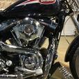 2007 Harley-Davidson® FXDL Dyna Low Rider