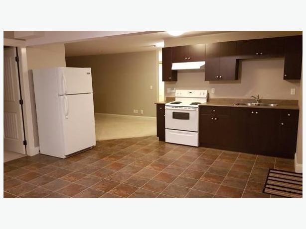 2 Bedroom Basement Suite For Rent (Langley)