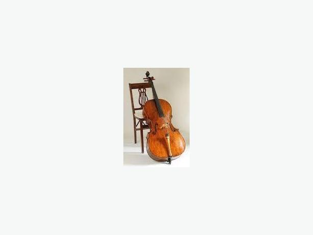 Voice and cello lessons from a registered teacher