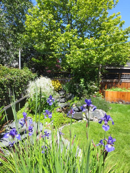 Seascape lawn and garden care victoria city victoria for 5334 seascape terrace nanaimo