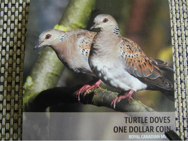 2014  TURTLE DOVES  LOVE COIN