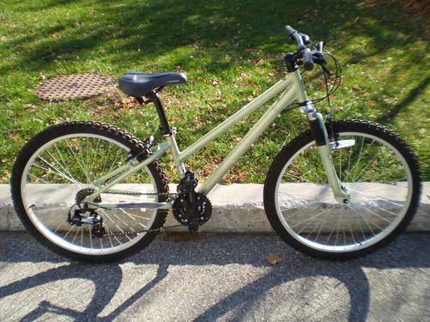 Norco Pinnacle 13 inch 21-speed Women's Mountain Bike TORONTO ...